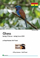 Ghana II