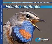 Fjellets sangfugler