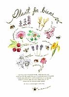 Plant for biene