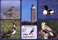 Postkort Lista Fuglestasjon