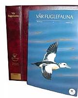 Perm til Vår Fuglefauna
