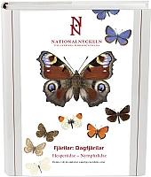 Fjärilar: Dagfjärilar, Hesperiidae - Nymphalidae