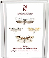 Fjärilar: Bronsmalar - rullvingemalar. Roeslerstammiidae - Lyonetiidae