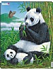 Puslespill - Panda