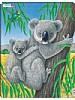 Puslespill - Koalabjørn