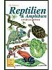 Reptiler og amfibier