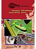 Venemous Snakes of Asia